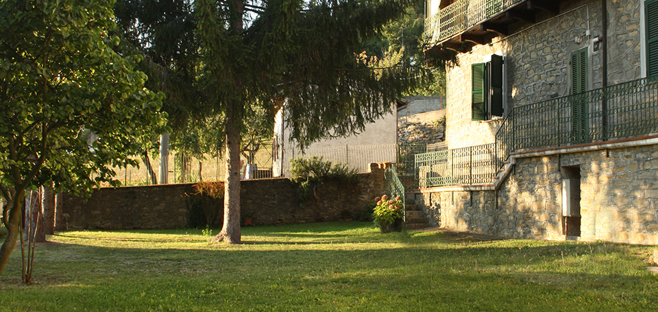 giardino_abeti